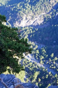 Looking down into SamariaGorge