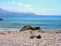 falasarna-beach.jpg